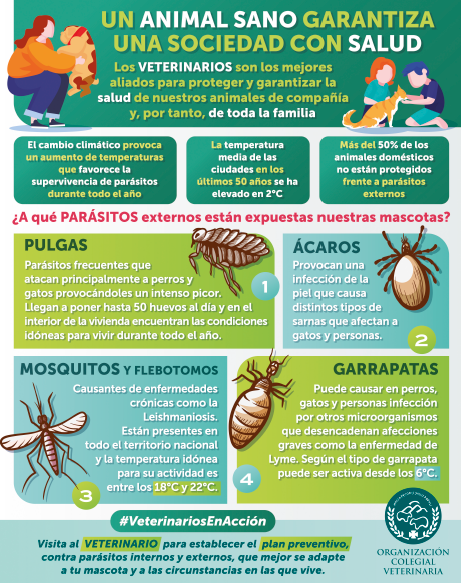 infografia-parasitos